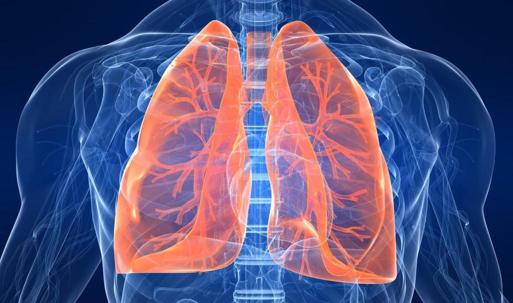 Akciğer temizle ile ilgili görsel sonucu