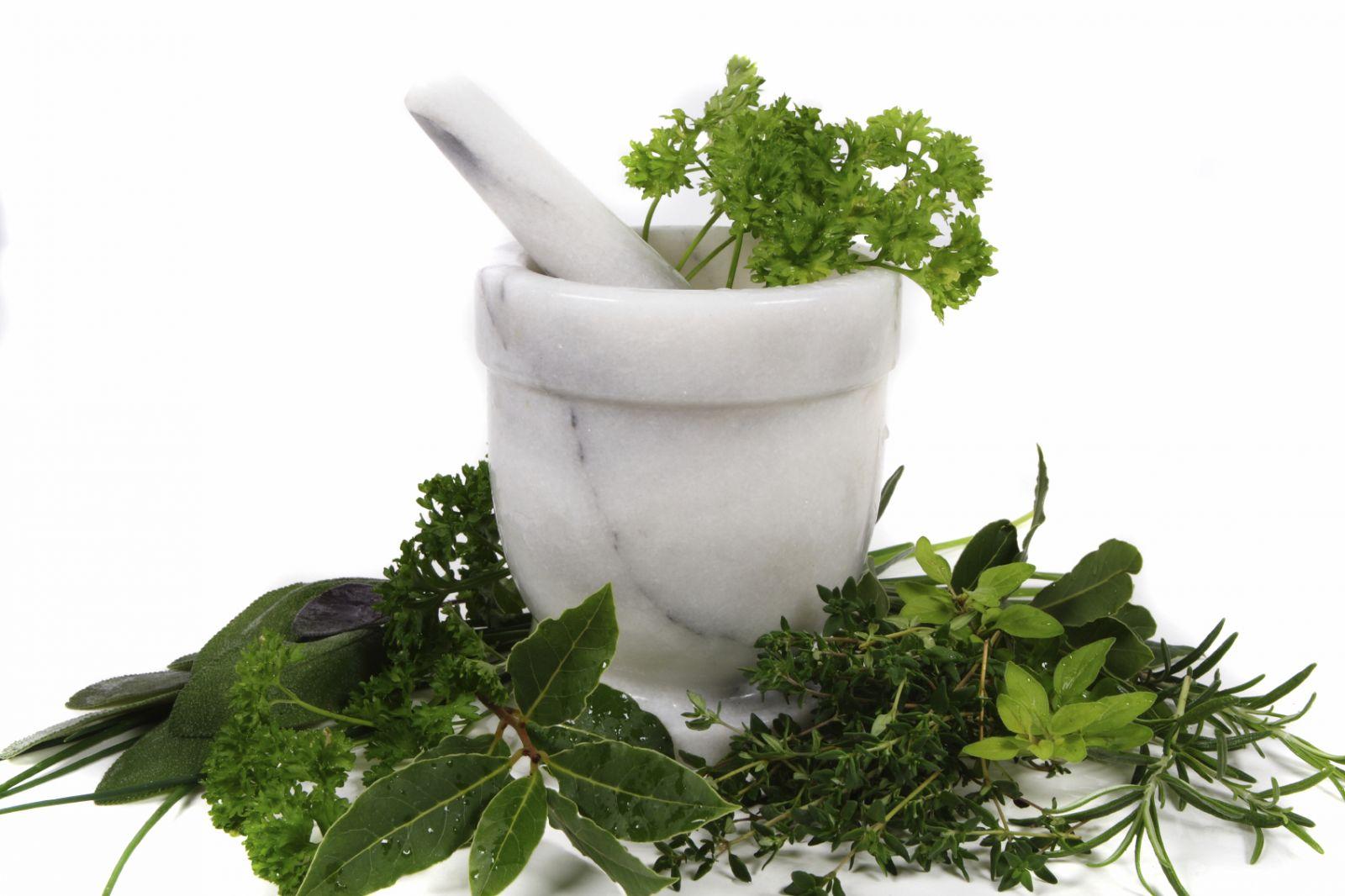 Bitkisel Çözümler ve Tedavi Yolları